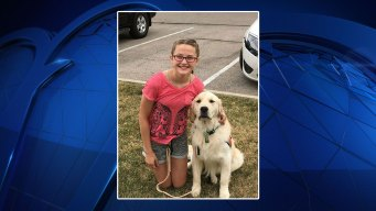 Reward Increased For Answers in Killing of NTX Service Dog