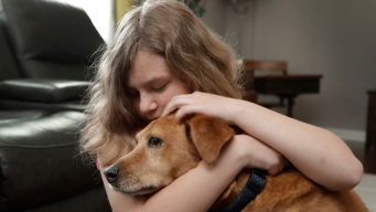 In 'Lawless' World of Service Dogs, Many Families Suffer