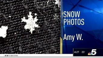 Snow Photos - January 6, 2017