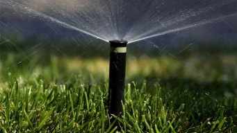 Dallas to Weigh Water Restrictions