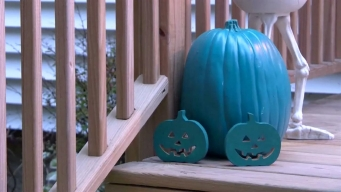 Teal Pumpkins Popping Up on Porches