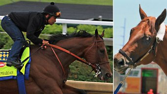Dortmund, American Pharoah Vie for Kentucky Derby Favorite