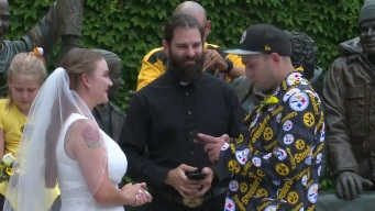 Unique Steelers Packers Wedding