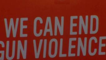 US Mayors Push to Curb Gun Violence, Help Immigrants