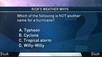 Weather Quiz: Hurricane Synonyms