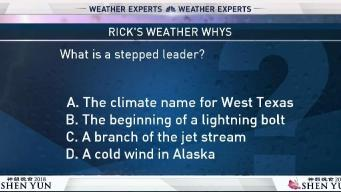 Weather Quiz: Stepped Leader