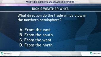 Weather Quiz: Trade Winds Direction