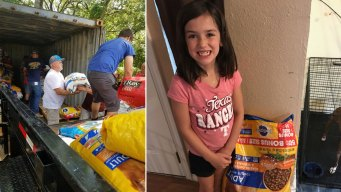 8-Year-Old Girl's Birthday Wish Prompts Pet Donations