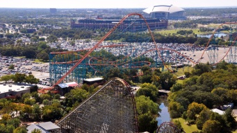 Six Flags Makes World Series Wager