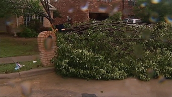 Storm Knocks Down Trees, Power Lines in McKinney