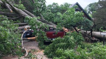 Two EF-1 Tornadoes Confirmed in Denton Co; Trees Crush Homes