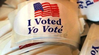 What's on Your Ballot for the Nov. 7 Election?