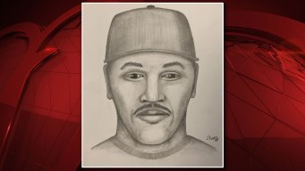 Sketch Released After Attempted Abduction in Farmers Branch