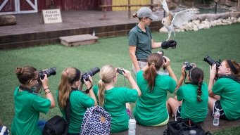 Summer Camp Options for North Texans