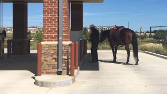 """Fort Worth Police """"Horsepower"""" Photo Going Viral"""