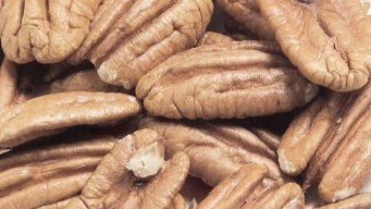 US Senators Call for Lower Tariffs on Pecan Exports to India