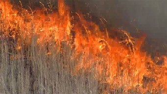 Firefighters Gear Up For Wildfires on Monday