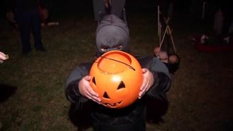 Halloween Deals, Freebies and Discounts