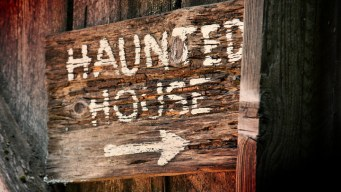 Haunted House Survival Guide
