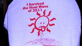Man Hawks Heat Wave 2011 T-Shirt