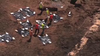 Houston-Area County Could Buy Land Where Human Remains Found