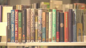Children, Adults Enjoy Lake Travis Community Library
