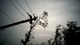 Puerto Rico Power Co. CEO Resigns Over Salary Blowup
