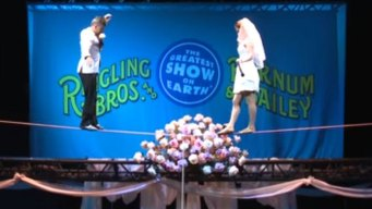 Circus Acrobats Marry on Tightrope During Show