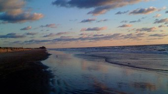 Fecal Bacteria at Texas Beaches? Check Here to See