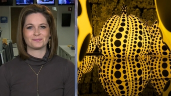 Sarah's Weekend Picks: State Fair, Kusama Exhibit