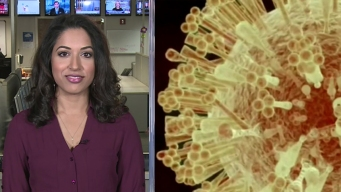 The DMN's Dr. Seema Yasmin: Zika Virus