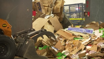 TDMN Watchdog: 'Wish' Recycling Causing Problems