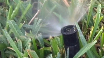 How to Keep Sprinklers from Wasting Water, Money