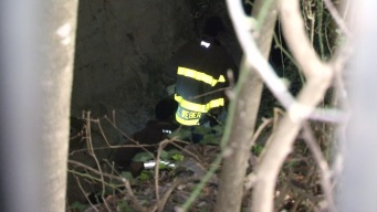 Teen Trapped in TX Cave for 10 Hours Rescued