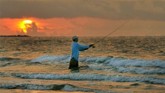 Mercury Levels Prompt Coastal Fish Warning