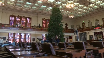 Christmas Tree Arrives at Texas Capitol