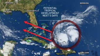 Potential Tropical Development Near The Gulf of Mexico