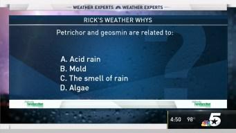 Weather Quiz: Petrichor and Geosmin