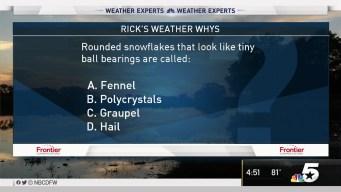 Weather Quiz: Rounded Snowflakes