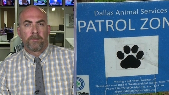 The DMN's Robert Wilonsky: Dallas Animal Services