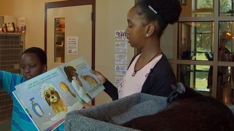 Reading Program Helps Kids and Shelter Pets