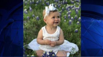 Bluebonnets in Bloom - April 18, 2018