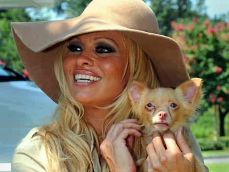 Pam Anderson Lists Malibu House on VRBO