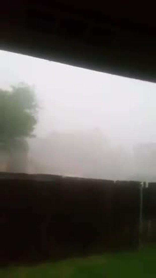 Arlington Storm
