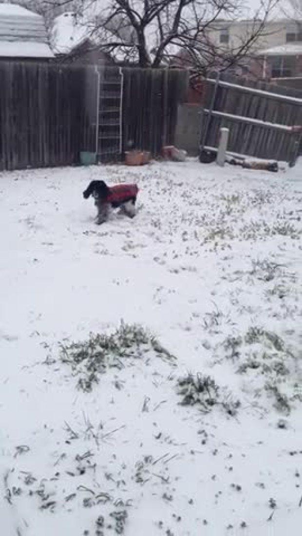 Catching snowballs