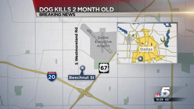 2-Month-Old Boy Dead After Pit Bull Attack