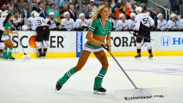 Ice Girls of the NHL 2013-14