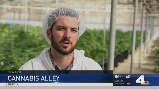 [NATL-LA] A Look Inside 'Pot Alley'