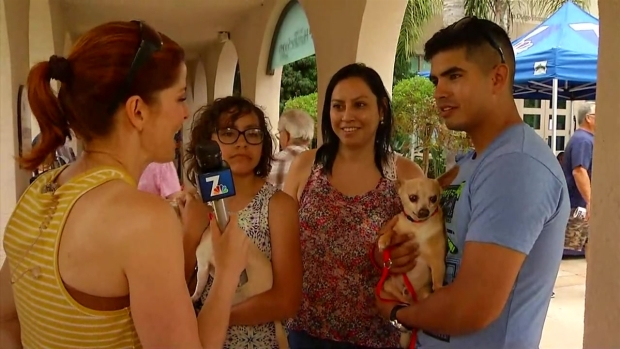 [NATL-DGO] San Diego Family Set to Adopt One Dog, Leaves With Two