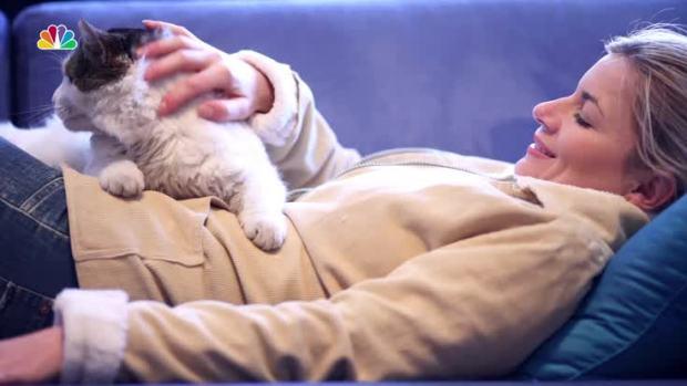 [NATL] Do Cats Actually Love Their Humans?